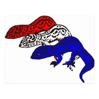 Patriot Geckos 01 Postcard