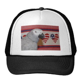 Patriotic 4th of July African Grey Cap
