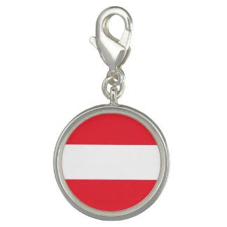 Patriotic Austrian Flag