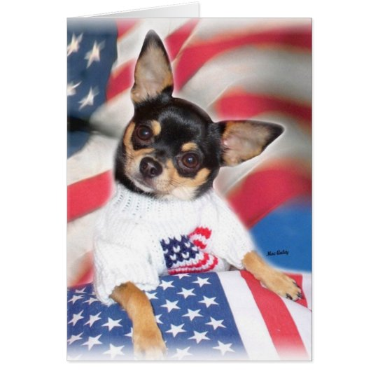 Patriotic Chihuahua greeting card