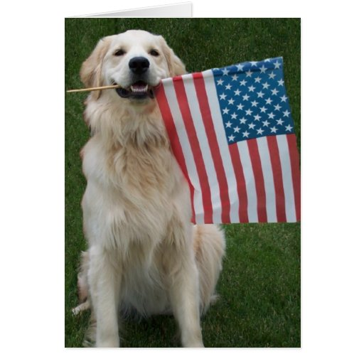 Patriotic Dog Greeting Card