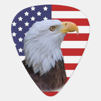 Patriotic  Eagle and USA Flag  Customizable Plectrum