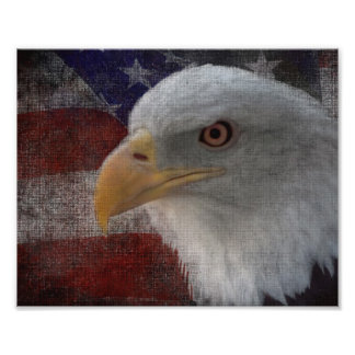 Patriotic Eagle & Flag Photographic Print