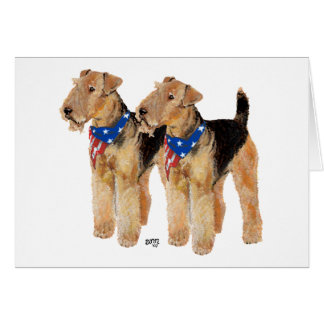 Patriotic Flag Duo Card