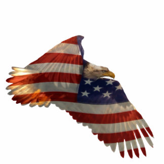Patriotic Flying Bald Eagle & Flag Sculpted Gift Photo Sculpture Magnet
