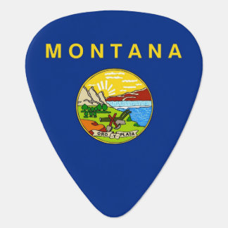 Patriotic guitar pick with Flag of Montana