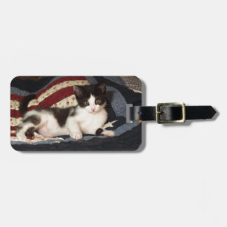 Patriotic Kitten on Quilt Luggage Tag