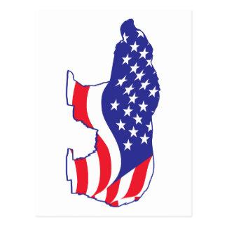 Patriotic Mama Grizzlie Postcard