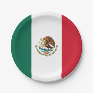 Patriotic Mexican Flag Paper Plate
