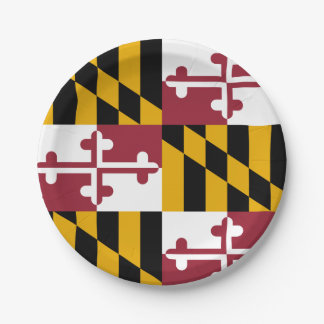 Patriotic paper plate with flag of Maryland