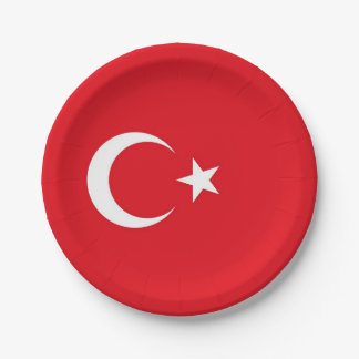 Patriotic paper plate with flag of Turkey