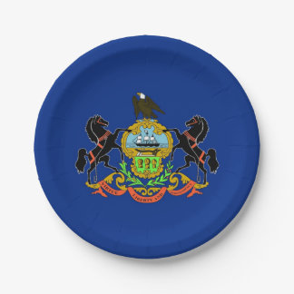 Patriotic paper plate with Pennsylvania flag