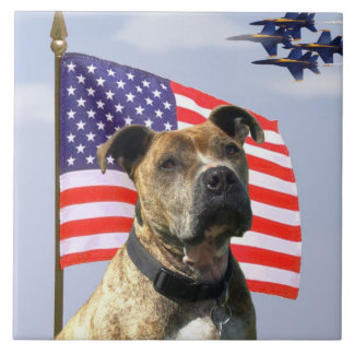 Patriotic pitbull dog tile