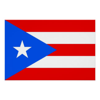 Patriotic poster with Flag of Puerto Rico Perfect Poster
