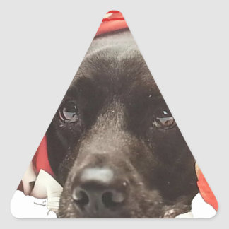 Patriotic Puppy Triangle Sticker