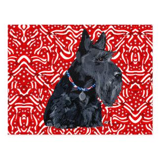 Patriotic Scottish Terrier Postcard
