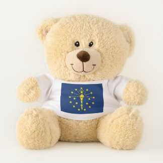 Patriotic Teddy Bear with flag of Indiana, USA