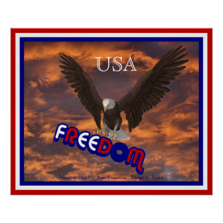 Patriotic USA Eagle Freedom Poster Print