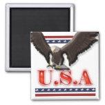 Patriotic USA eagle stars stripes