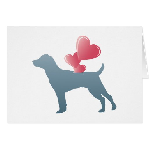 Patterdale Terrier Cards
