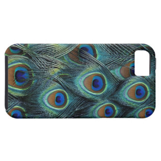 Pattern in male peacock feathers case for the iPhone 5