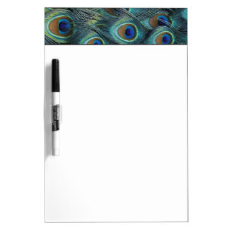 Pattern in male peacock feathers dry erase board