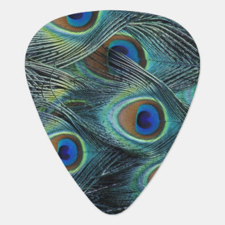 Pattern in male peacock feathers guitar pick