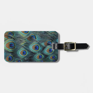 Pattern in male peacock feathers luggage tag