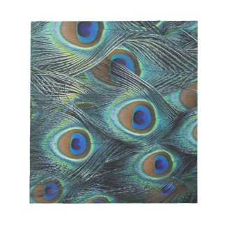Pattern in male peacock feathers notepad