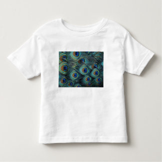 Pattern in male peacock feathers toddler T-Shirt