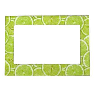 Pattern Of Green Lime Slices Magnetic Frames