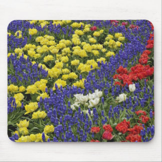 Pattern of tulips and Grape Hyacinth flowers, 2 Mouse Mat
