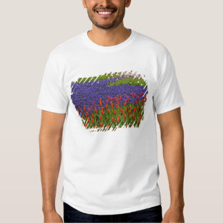 Pattern of tulips and grape hyacinth flowers, 2 t-shirt