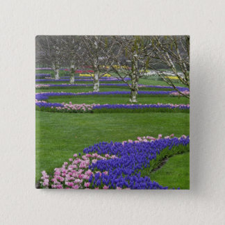 Pattern of tulips and Grape Hyacinth flowers, 4 15 Cm Square Badge