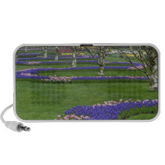 Pattern of tulips and Grape Hyacinth flowers, 4 PC Speakers