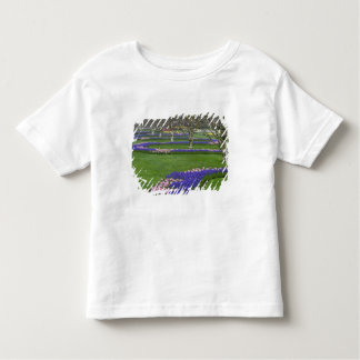 Pattern of tulips and Grape Hyacinth flowers, 4 Toddler T-Shirt