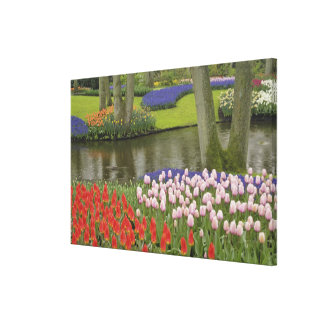 Pattern of tulips and grape hyacinth flowers, canvas print