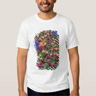 Pattern of tulips and Grape Hyacinth flowers, T Shirt