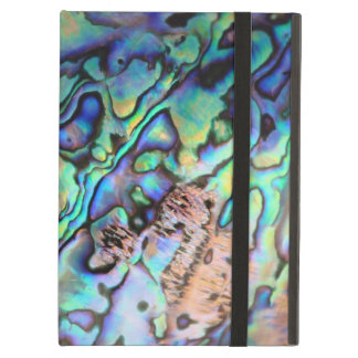 Paua abalone blue and green shell detail iPad air cover