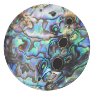 Paua abalone blue and green shell detail plate