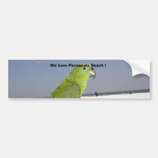 paulie beach, We Love Pensacola Beach ! Bumper Sticker