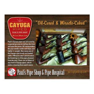 Paul's Cayuga Postcard