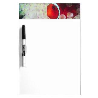 Paupau New Guinea, Great Barrier Reef, Dry Erase Board