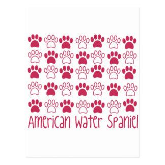 Paw by Paw American Water Spaniel Postcard