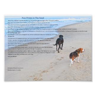 Paw Prints in The Sand 8 79 x 6 59 Print Photo Art