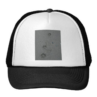Paw Prints in the Sand Trucker Hat