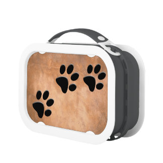 PAW PRINTS LUNCHBOXES