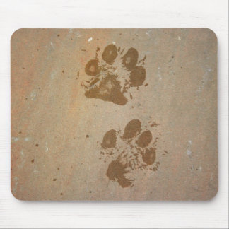 Paw Prints on Stone Mouse Pad