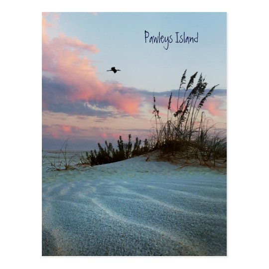 Pawleys Island Dune Sunset Postcard