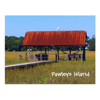 Pawleys Island Postcard